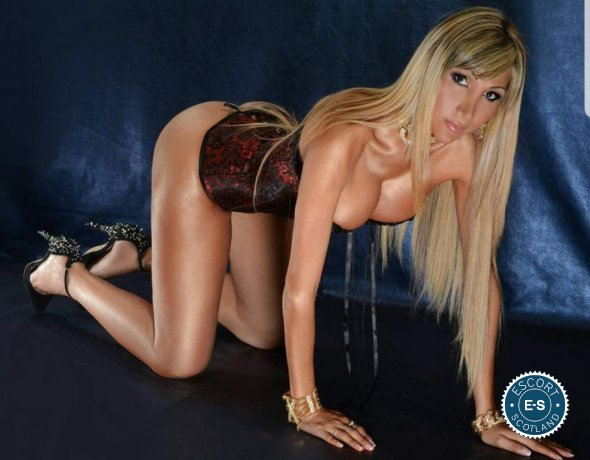 Maria TS is a hot and horny Spanish Escort from Inverness