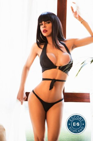 TS British Nicole is a hot and horny British Escort from Dundee