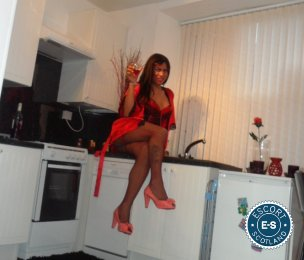TS Karen Brazilian is a hot and horny Brazilian Escort from Stirling City