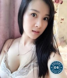Aida is a sexy Chinese Escort in Glasgow City Centre