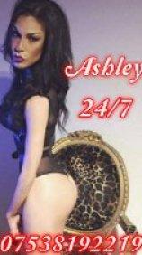 Ashley Naughty Barbie Latina TS - escort in Edinburgh